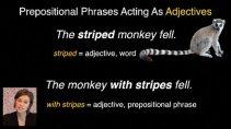 Video Grammar Lessons