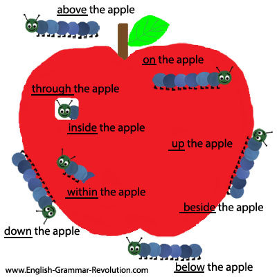 Apple and caterpillar preposition picture