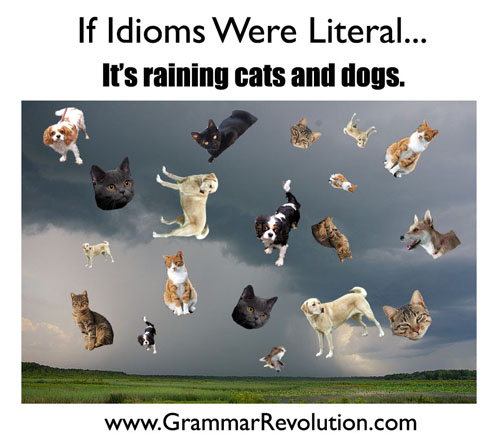 Idioms - It's raining cats and dogs.