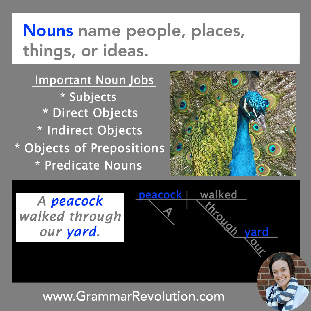 List of Nouns: Examples to Help You