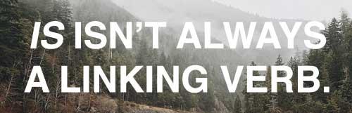 IS isn't always a linking verb. It's true! www.GrammarRevolution.com/linking-verb.html