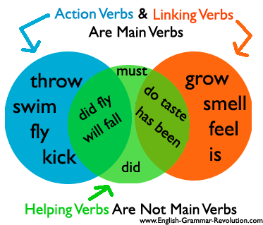 Helping verbs always help either an action verb or a linking verb.