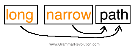 coordinate adjective illustration