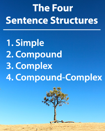 english grammar structure of sentence The 4 english sentence types (do not confuse with the 4 types of sentence structure) there are four types of english sentence grammar: the 4 english sentence.