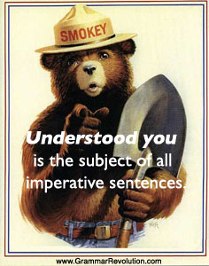 Understood You - Commands