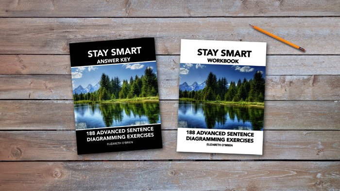 Stay Smart Workbook Cover
