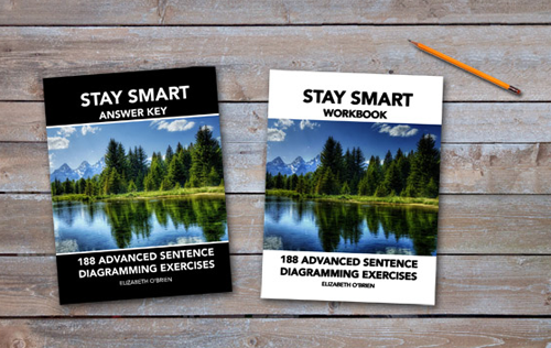 Stay Smart grammar program