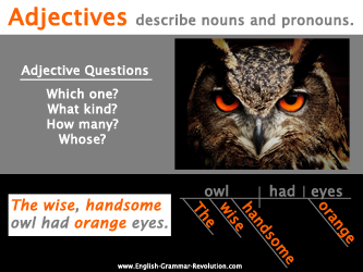 Adjectives describe nouns and pronouns.