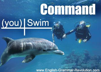 Sentence diagram of a command