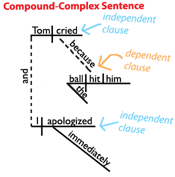 Sentence structure learn about the four types of sentences heres a sentence diagram of a compound complex sentence grammar revolution ccuart Choice Image