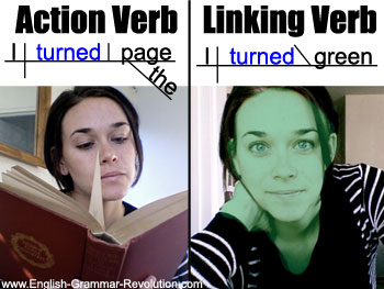 Action Verb vs Linking Verb + Sentence Diagram www.GrammarRevolution.com/what-is-a-verb.html