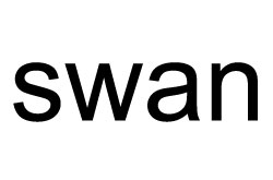The word SWAN is a noun. www.GrammarRevolution.com/what-is-a-noun.html